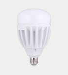 FSL LED 30w High power bulb